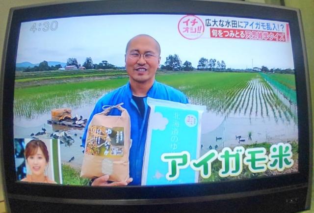 西山さんテレビに出る20200629